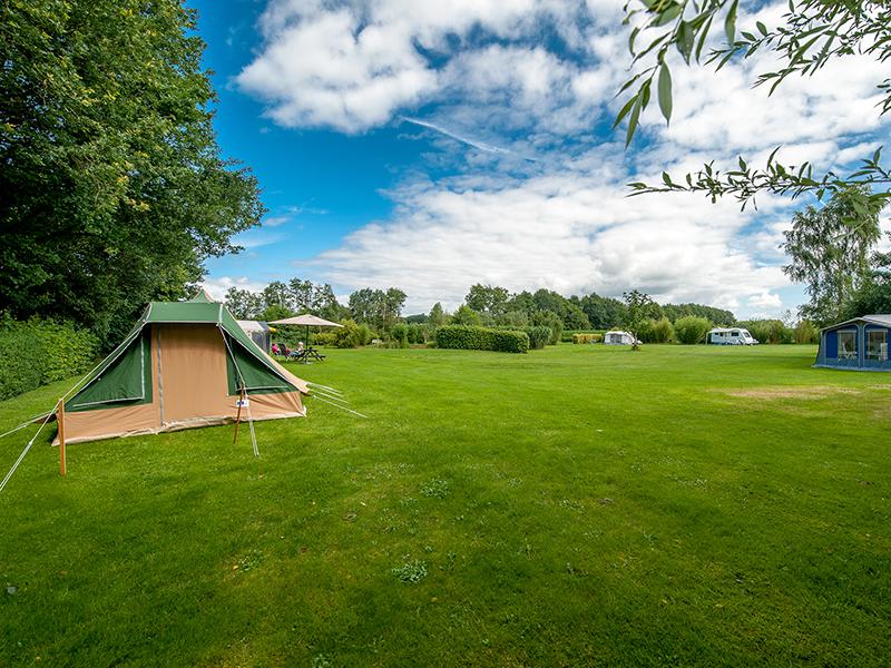Tent op een veld bij camping PUUR Natuurlijk