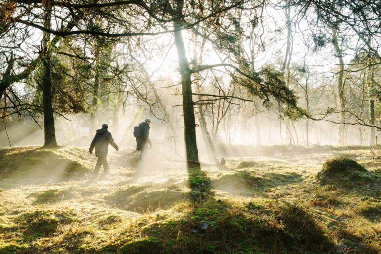 Twee mensen lopen in een bos met dauw